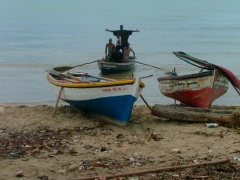 Fishing boats...